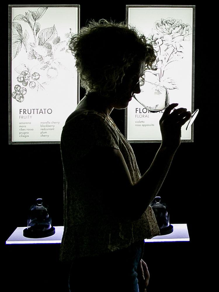 La mostra e il percorso sensoriale